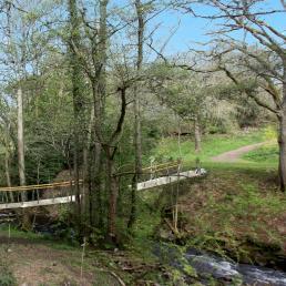Elevation of stress ribbon footbridge over stream